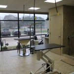 New Grooming Facility - At the Pet Inn & Spa our professional groomer is available by appointment.