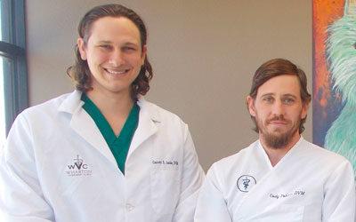 Meet your Veterinarian